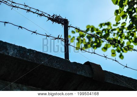 barbed wire on the wall on the sky background