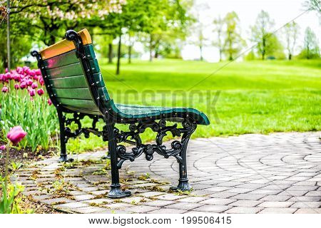 Empty bench in green plaines d'Abraham in morning during summer with pink or purple tulip flower bed in Quebec City