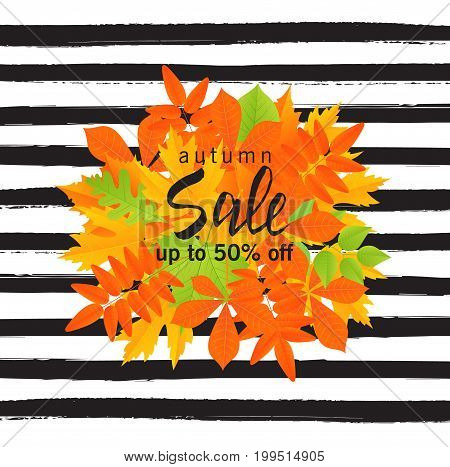 Autumn sale poster with fall leaves on striped background. Vector illustration for website and mobile website banners posters email and newsletter designs ads coupons promotional material