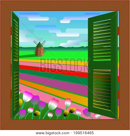 Window to Holland. Netherlands landscape background with mill and tulip field. Vector illustration