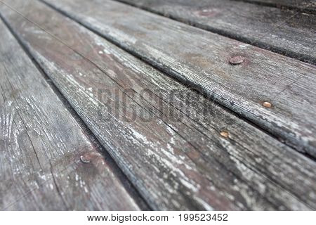 Eroded gray vintage grunge wooden board texture 3