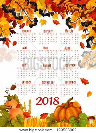 Autumn calendar 2018 poster template of seasonal autumn falling leaves and pumpkin or rowan berry harvest. Vector design of maple leaf, oak acorn or birch and aspen foliage and mushrooms