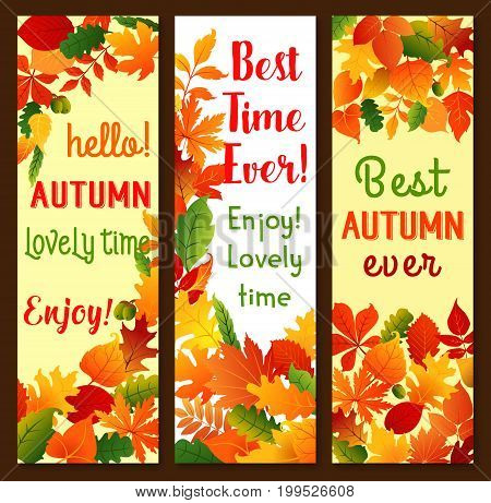 Autumn banners for seasonal greetings temlate of falling leaves of maple, aspen or chestnut and ash tree. Vector set of nature foliage for Hello Autumn and lovely time qotes