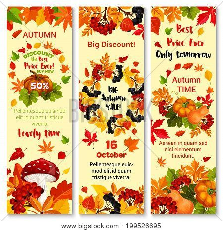 Autumn sale 50 percent off banners design template for autumn seasonal shopping discount promo in October . Vector set of maple leaf, oak acorn and birch foliage, berries and mushrooms