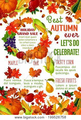Autumn sale banner with fall harvest vegetable, fruit and leaf frame. Autumn season discount offer poster design with pumpkin, corn, maple foliage, apple, grape, forest mushroom, acorn and cranberry