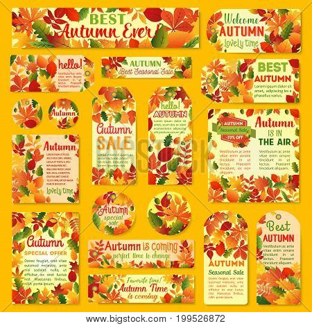 Autumn sale tag and label set with fall leaf. Orange maple leaves, yellow and red foliage of chestnut, oak and birch tree, acorn branch with price discount offer text layout for retail design