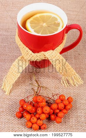 Cup Of Hot Tea With Lemon Wrapped Woolen Scarf, Autumn Decoration On Jute Barlap