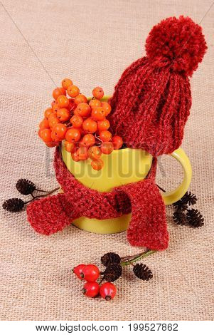 Autumn Decoration With Cup Wrapped Scarf And Woolen Cap On Jute Burlap