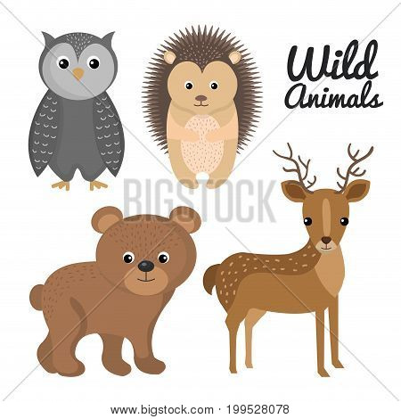 cute wild animal nature fauna set image vector illustration