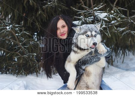 Happy winter time of joyful young woman playing with cute husky dog in snow on street. , positive emotions, real friendship with pets, waiting for christmas