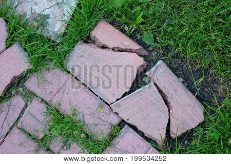 broken road of pink tile overgrown with green grass background