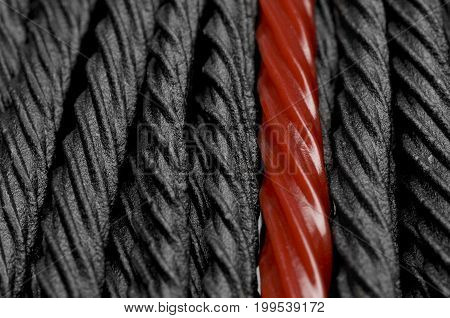 Single red licorice against black licorice candy