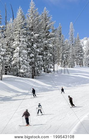 Snowboarders and Skiers on the slopes in winter