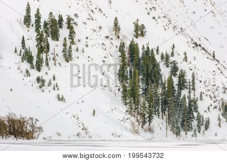 Snow-covered mountainside in winter along Convict Lake, California