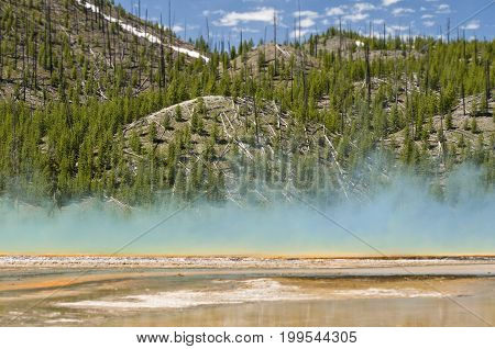 Grand Prismatic Spring in Midway Geyser Basin Yellowstone National Park ,Wyoming