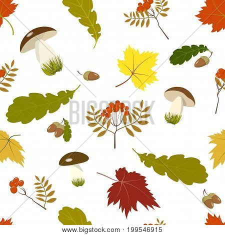 Seamless pattern, mushrooms, colorful autumn maple and oak leaves, branches and berries of mountain ash and acorns Isolated on white background, vector illustration