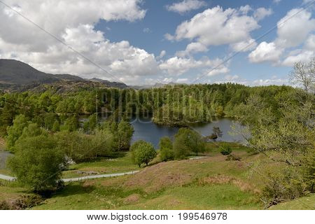 Tarn Hows in English Lake District with Wetherlam