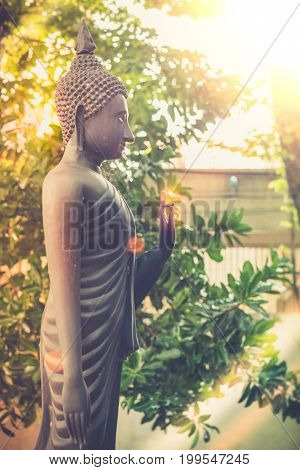 Vintage Image Style, The Standing Buddha Statue Of Temple Garden In Bangkok, Thailand