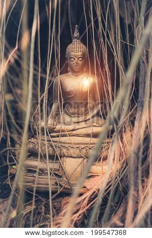 Vintage Image Style Of Buddha Statue Under The Big Green Tree And Root , Thailand