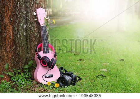 pink ukulele music headphones and black camera on green grass background.
