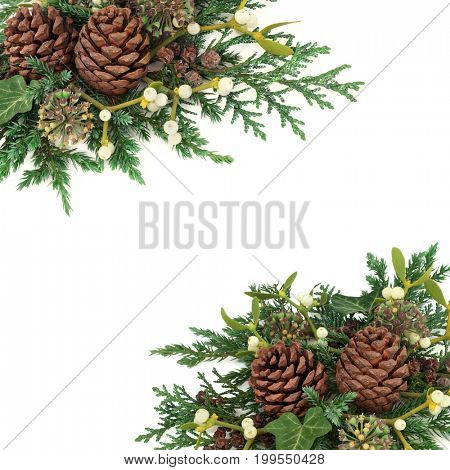 Winter background border of cedar cypress and juniper leaf sprigs with mistletoe, ivy and pine cones  on white.