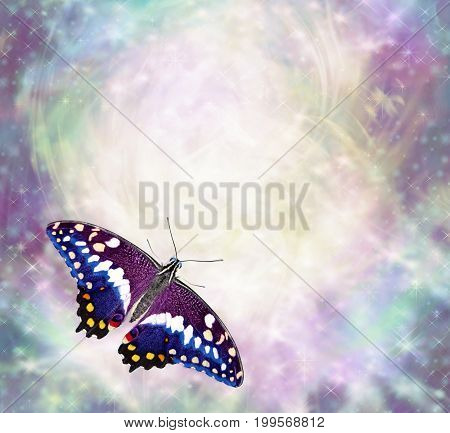 Butterly messages border - beautiful multicoloured butterly with open wings in bottom left corner of ethereal wispy energy formation background ideal copy space for messages