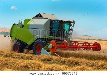 Harvester machine to harvest wheat field working. Combine harvester agriculture machine harvesting ripe wheat field. Agriculture