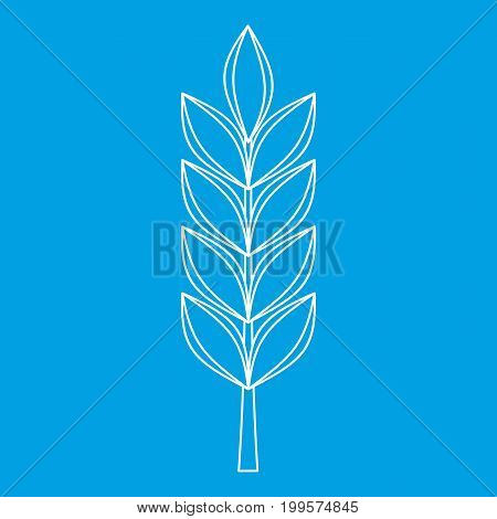 Wheat spike icon blue outline style isolated vector illustration. Thin line sign