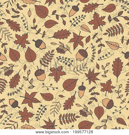 Colorful vector hand drawn pattern with autumn elements: foliage berries and acorns on the beige background. Maple sycamore birch beech and oak tree leaves. For your design.