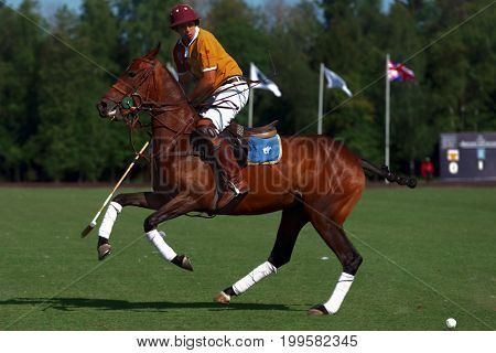 TSELEEVO, MOSCOW REGION, RUSSIA - JULY 26, 2014: Francisco Ramos of Tseleevo Polo club in action during the match against the Oxbridge polo team during the British Polo Day. Oxbridge won 5-4