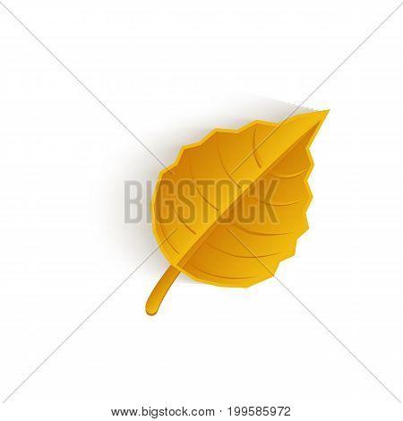 vector cartoon autumn fallen oak leaf isolated icon symbol. Illustration on a white background. Autumn object concept