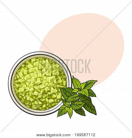 Bowl of organic, green aromatic, bath salt, top view sketch style vector illustration with space for text. Realistic top view hand drawing of aromatic bath salt, spa salon accessory