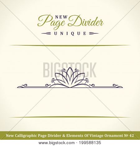 New Calligraphic Page Divider and Element of vintage ornament. Elements for retro logo and vector crest, decorative border line. Pistachio royal border book