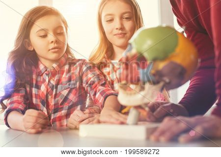 I want touch it. Attractive longhaired female person looking downwards while touching holder for model of skull and standing near her classmate