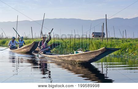IINLE LAKE, MYANMAR - JANUARY 11, 2012: Intha fishermen catches fish for food over floating garden on Inle Lake in Shan state of Myanmar