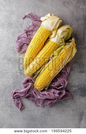 Fresh corn on cobs on gray concrete background. Top view