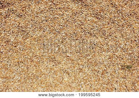 gravel / aggregate pattern - small yellow, orange and white stones