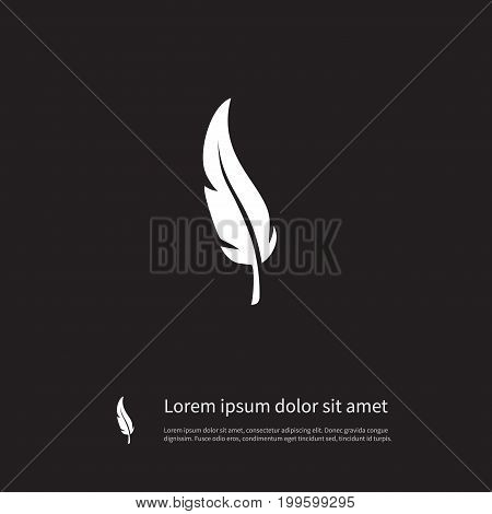 Quill Vector Element Can Be Used For Feathering, Plumage, Quill Design Concept.  Isolated Plumage Icon.