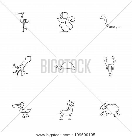 Set Of 9 Editable Zoo Doodles. Includes Symbols Such As Lobster, Tortoise, Tentacle And More