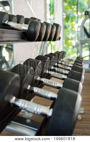 Rows of dumbbells in the modern gym.