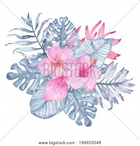 Watercolor hand painted tropical flower bouquet pink calla hibiscus frangipani and leaves of indigo palm monstera isolated on white background. Floral illustration arrangement. Botanical art