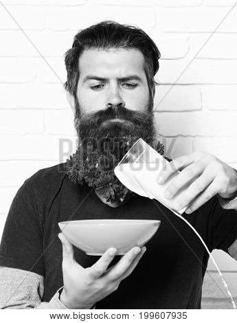 handsome bearded man with stylish mustache and long beard with red autumn flowers on serious face pours milk into yellow bowl on white brick wall background