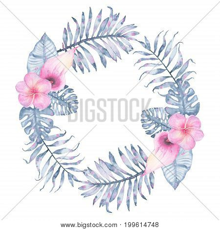 Watercolor tropical indigo floral wreath with pink calla frangipani and leaves of indigo palm monstera. Botanical illustration isolated on white background