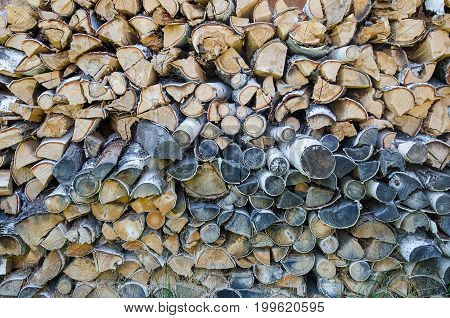 background of cut birch logs for fire