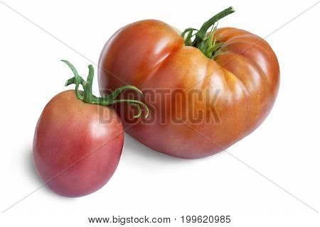 Two delicious ripe tomato with the stem. Presented on a white background.