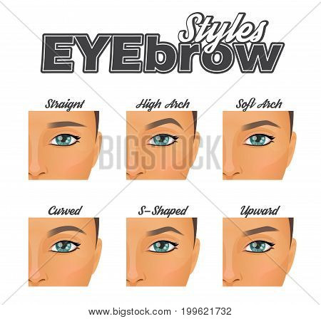 Make-up information chart showing various eyebrow shapes and looks. Straight, arched and curved eye brow variations, pretty woman face model.