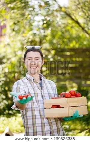 Farmer with box of tomato