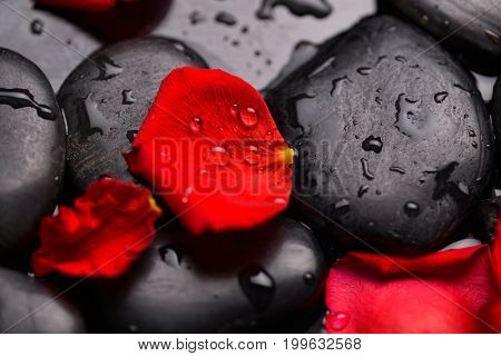 Red rose petals with drops of water on stones background