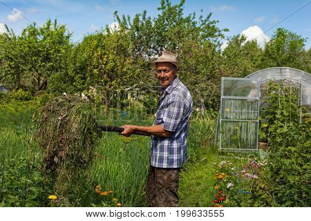 An old farmer with pitchforks. Work on the farm. Hay making.