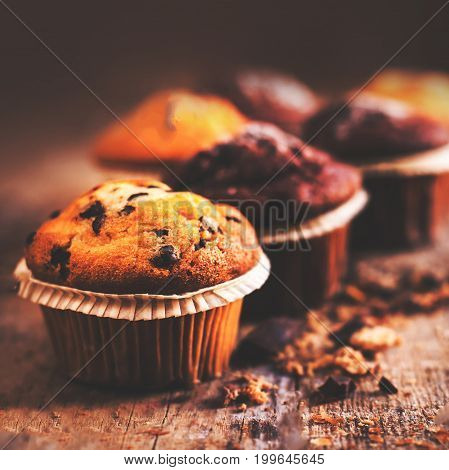Fresh Chocolate dark muffins on wooden table close up with copy space